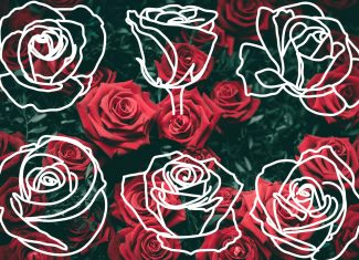 Hand-Drawn Rose Outlines FREE PRINTABLE