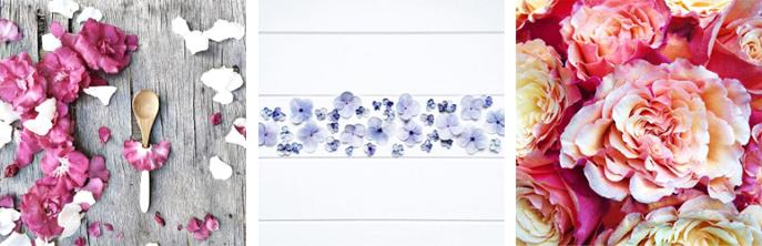 flowery-ig_02