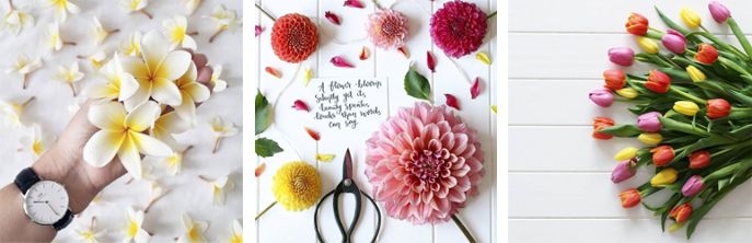 flowery-ig_03