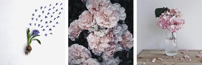 flowery-ig_06