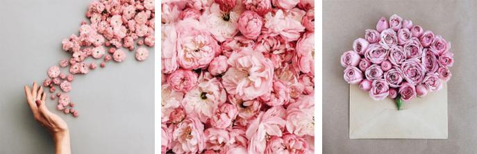 flowery-ig_07
