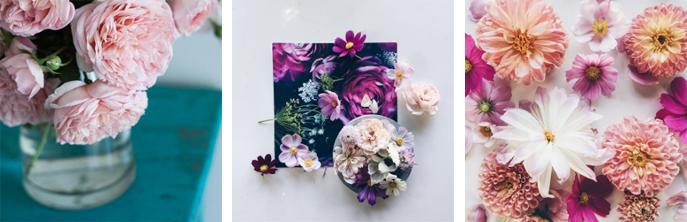 flowery-ig_08