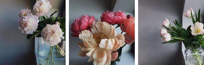 flowery-ig_11