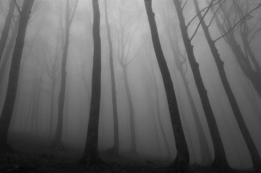 5-spooky-historical-fiction-novels